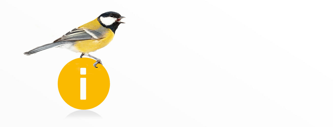 header-fruehervogel